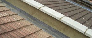 Roof Maintenance example